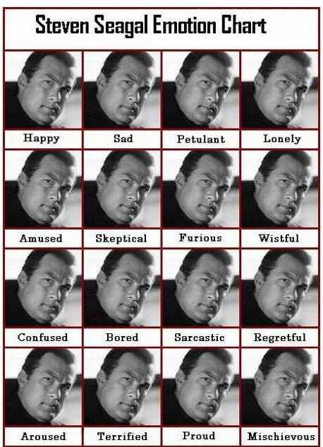 steven seagal mood chart. . m I in steven seagal mood chart m I in