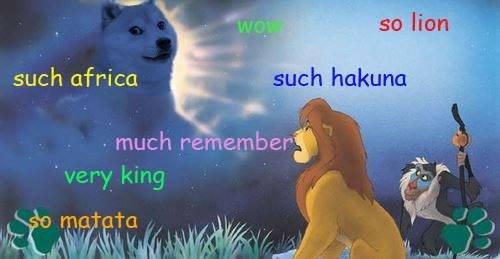 Such sad. . my lion such africa Such sad my lion such africa