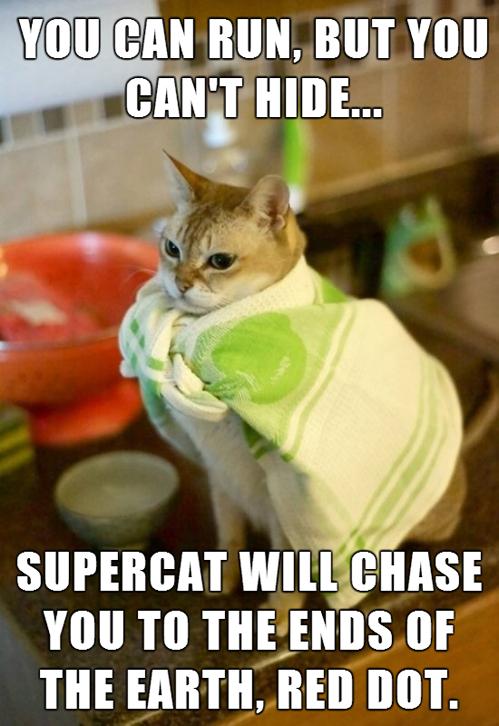 Supercat. . WE CAN BUN. BUT Hill itallians You TO Tamas or THE Emmi. Bill BOT. Supercat WE CAN BUN BUT Hill itallians You TO Tamas or THE Emmi Bill BOT