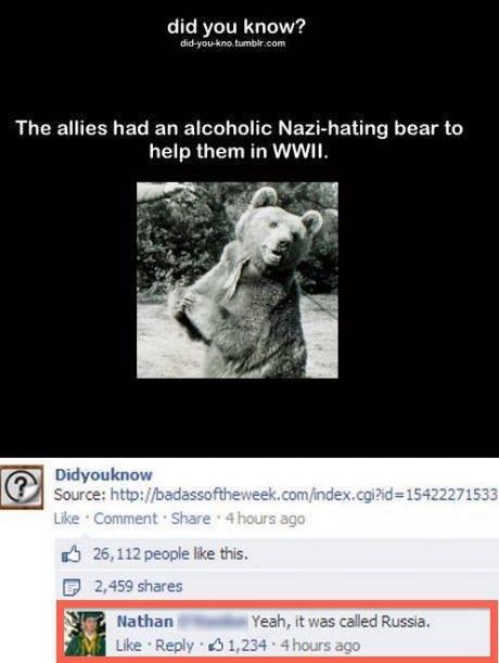 "War bear. . did you knew? u. ""rtnn The allies had an bear to help them in WWII. Did van knew Source: . 1 Us 3 til 26. 112 ' Eris. Ill Pritti' wereas REB. rt was 4Chan"