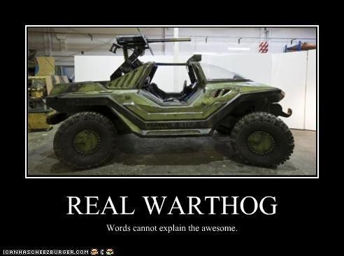 Warthog. . Warthog