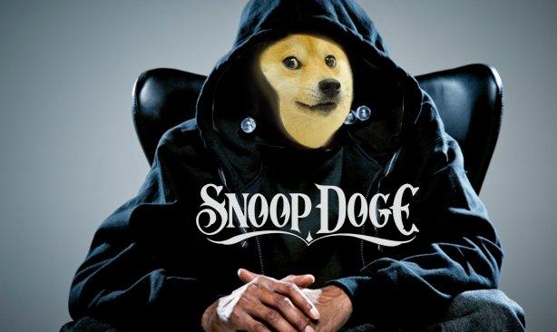 Wassup doge. My first OC. Wassup doge My first OC
