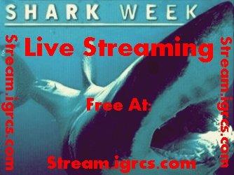 Watch Shark Week HDTV New Episodes. Watch @ Watch @ Watch @ . shark week watch Shark Week Shark Week previ Shark Week revie