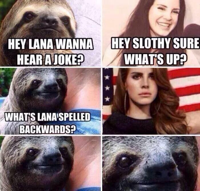whats Lana spelled backwards.... . I i ila HEY MN WANNA HEY luiigii was pi, via fun III sloth backwards
