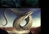 Leviathan Comp 3