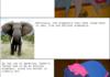 Racist Dumbo
