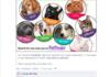Less Adoptable Pets