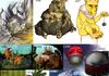 The Original 150 Pokemon 84-115