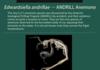 New Animal Identification of 2014