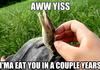 I'ma eat you