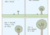 Fucking Trees