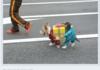 Dog butler