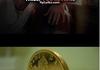 Coin Flip!