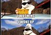 are cats still funny?