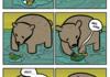 depressed fish