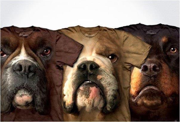 3D t-shirts. . 3D t-shirts