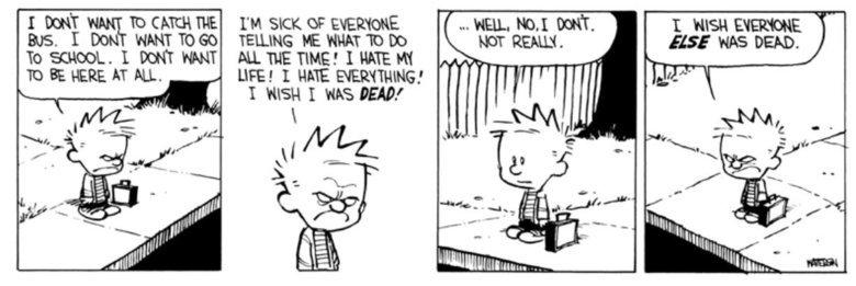 Calvin and Hobbes. . LIFE! I HATE ' calvin and hobbes