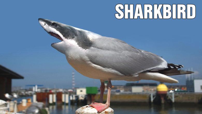 Carefull it Bites !. . SHARKBITE Shark attack Scary funny lmfao lol Hybrid animal