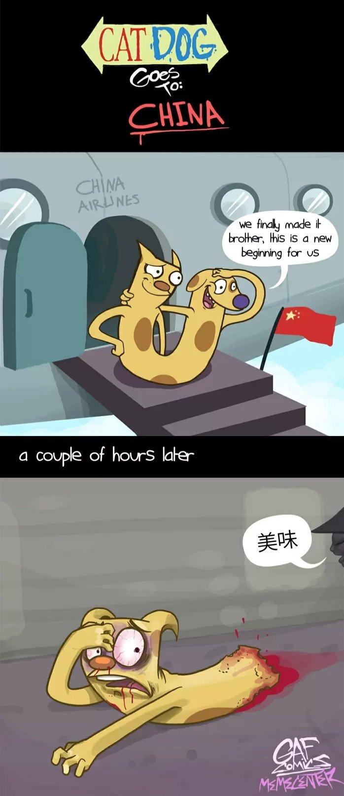 CatDog in China. All rights belong to Gafcomics.. Later.... catdog china