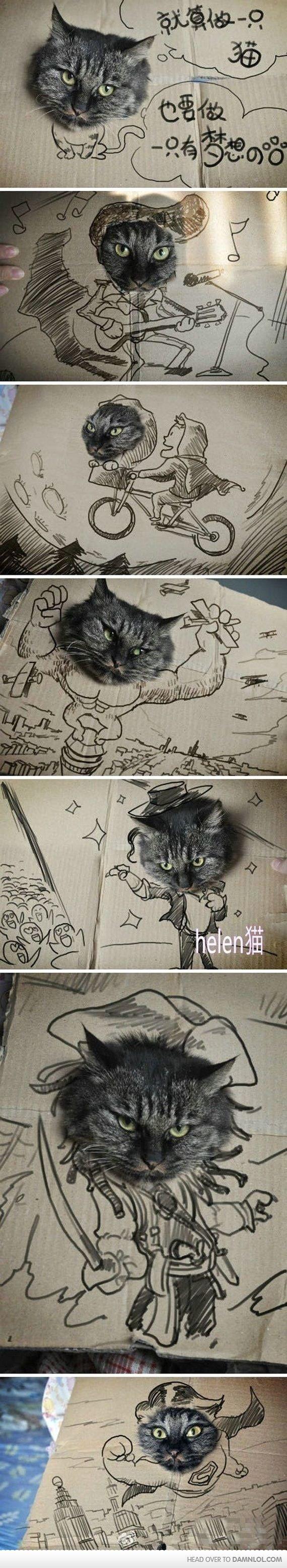 Cats. Cats cats cats cats. Cats