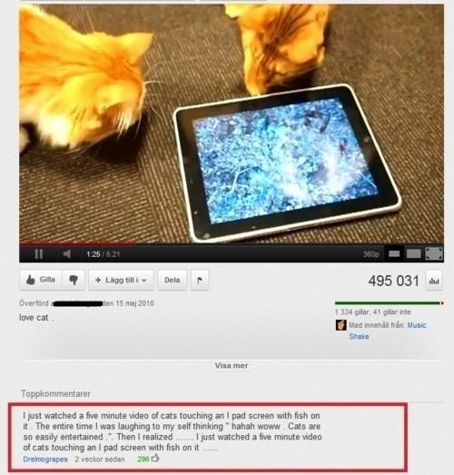 "Cats. It's a test.. h thm q ' : IJJI "" Dell F 495 031 id k In -rna' rae H Mayy HI: Hum: Stoke Inou mm"" washed a he minutia was tal can touching 31 I pad screen  Cats It's a test h thm q ' : IJJI "" Dell F 495 031 id k In -rna' rae H Mayy HI: Hum: Stoke Inou mm"" washed he minutia was tal can touching 31 I pad screen"