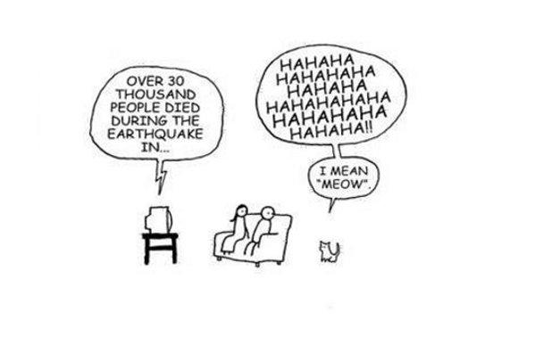 Cats. . Cats