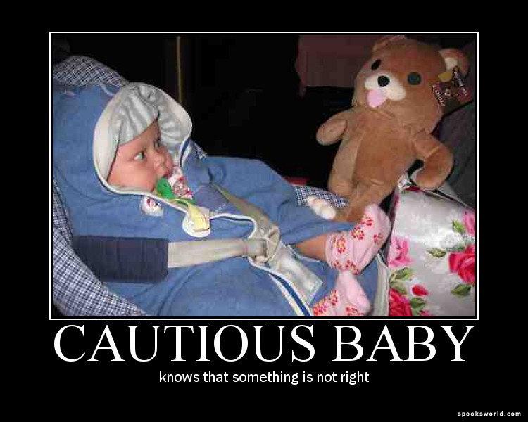 cautious baby. .. Repost. pedobear baby toy bear stuffed animal