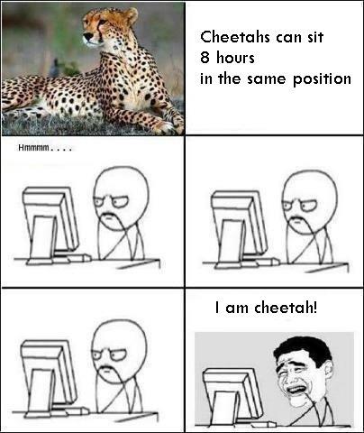 cheetah?. . Reeta's can sit hours the same position. Megan Fox can sleep for 8 hours a night. Hmmmm.... I am Megan Fox (That how stupid you sound) cheetah? Reeta's can sit hours the same position Megan Fox sleep for 8 a night Hmmmm I am (That how stupid you sound)