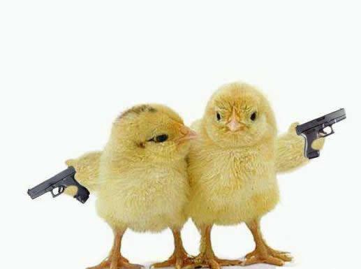 Chicks with guns. yeah.. fucking guns bit