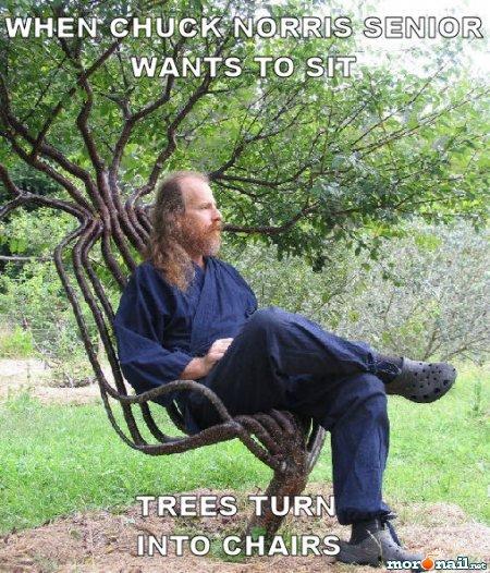 Chuck Norris Chair. Ladies And Gentlemen....The Tree Chair.. this guy is so baddass he makes crocs look good Chuck Norris chair