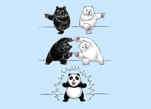 creation of a panda. . creation of a panda