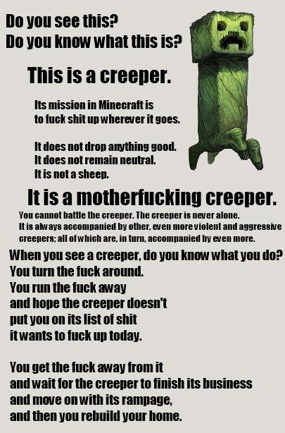 Creepers. Minecraft FTW. Creepers Minecraft FTW