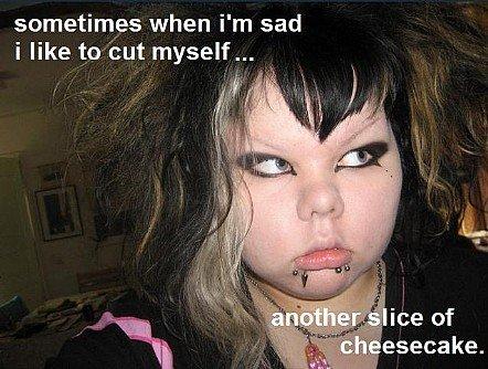Cut myself.. Hopefully not Re-toast i lol'd <br /> credit to lolrandom.com. sometimes when i' m sad i like to but myself... cut myself cheesecake lol