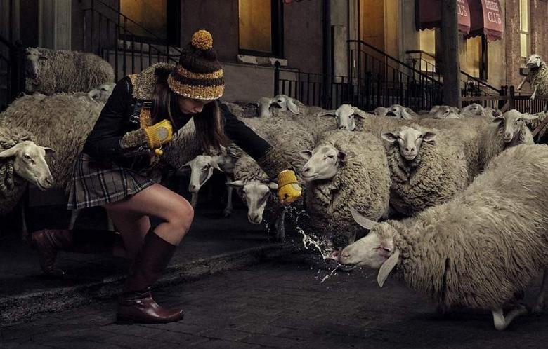 Girl vs sheeps. .. Baa Ram Ewe. To my fist you will be true. Girl vs sheeps Baa Ram Ewe To my fist you will be true