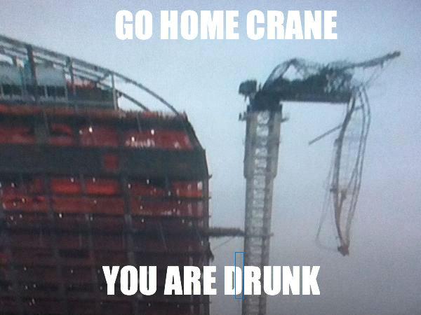 GO HOME CRANE. herp 100% OC. ABE. go home blue rectangle you are drunk GO HOME CRANE herp 100% OC ABE go home blue rectangle you are drunk