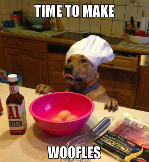 Good dog. . TIME TO MAKE Good dog TIME TO MAKE