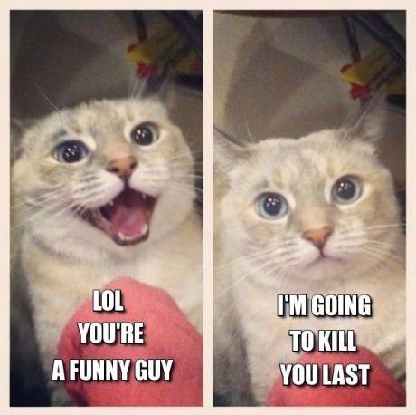 Good Stuff. i shall fear no repost.. I Lied cats maniac psyc