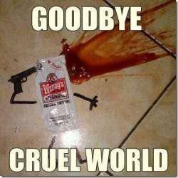 Goodbye. . Goodbye