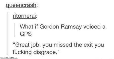 Gordon Ramsay GPS. Slugs: www(dot)crackedsorcerer(dot)com/post/1786/Slugs. What if Gordon Ramsay voiced a GPS Great job, you missed the exit you fucking disgrac funny tumblr