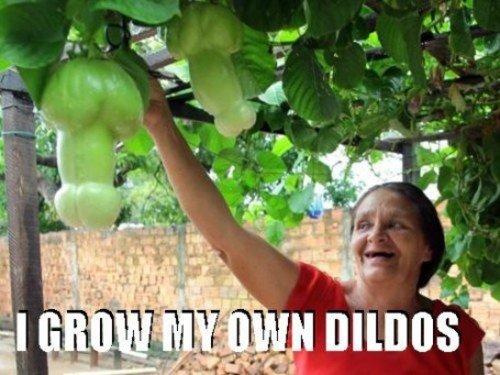grandmas little secret. dfghjklö. dildos grandma