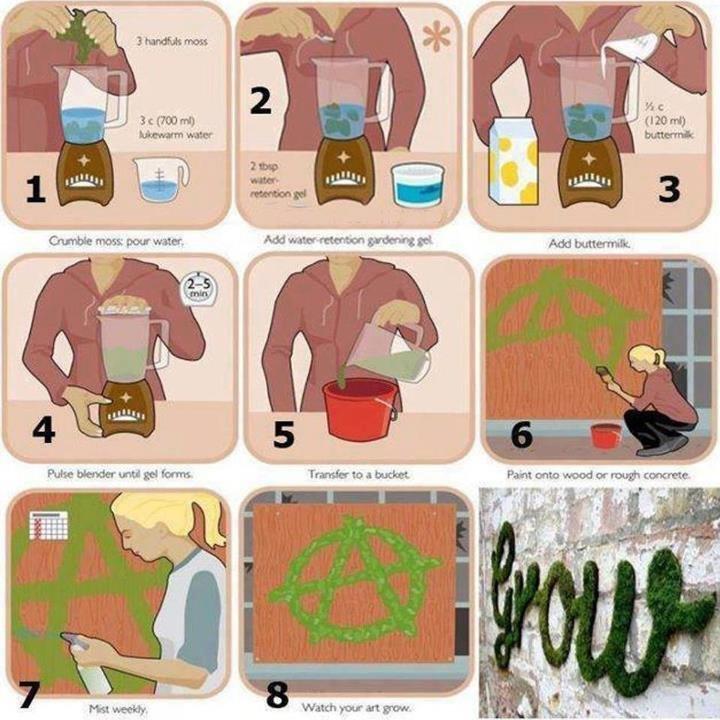 Grow your own Graffiti. . d aeae in. Better quality. I've got a of these. moss Graffiti Art blender
