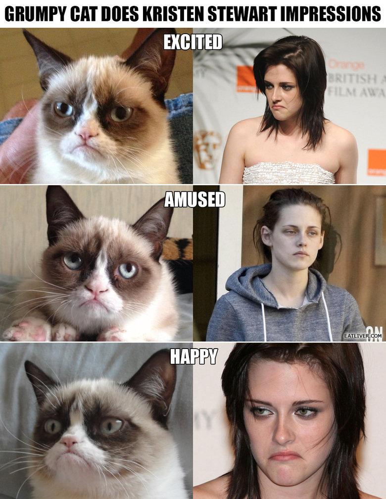 grumpy cat impressions. cat. EAT MES KRISTEN STEWART Miran iid llil' I u LIVE IBM immpression