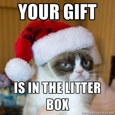Grumpy cat shows his generosity.... .. It's a new laptop Grumpy cat shows his generosity haha lol funny
