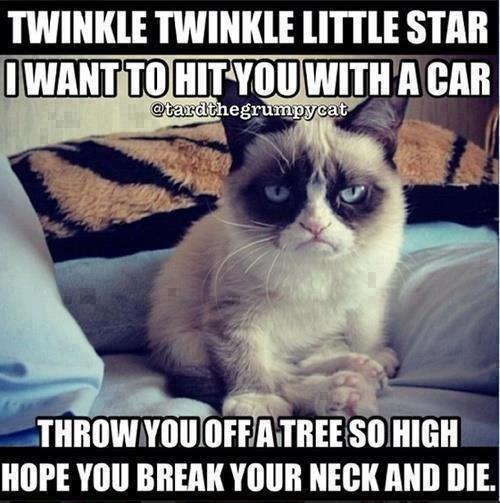 grumpy cat. . I' WINI( TWILI( ' STAB Irs. HT' Ill A Mil HOPE MEM YOUR NEW Mil DIE. grumpy cat poem