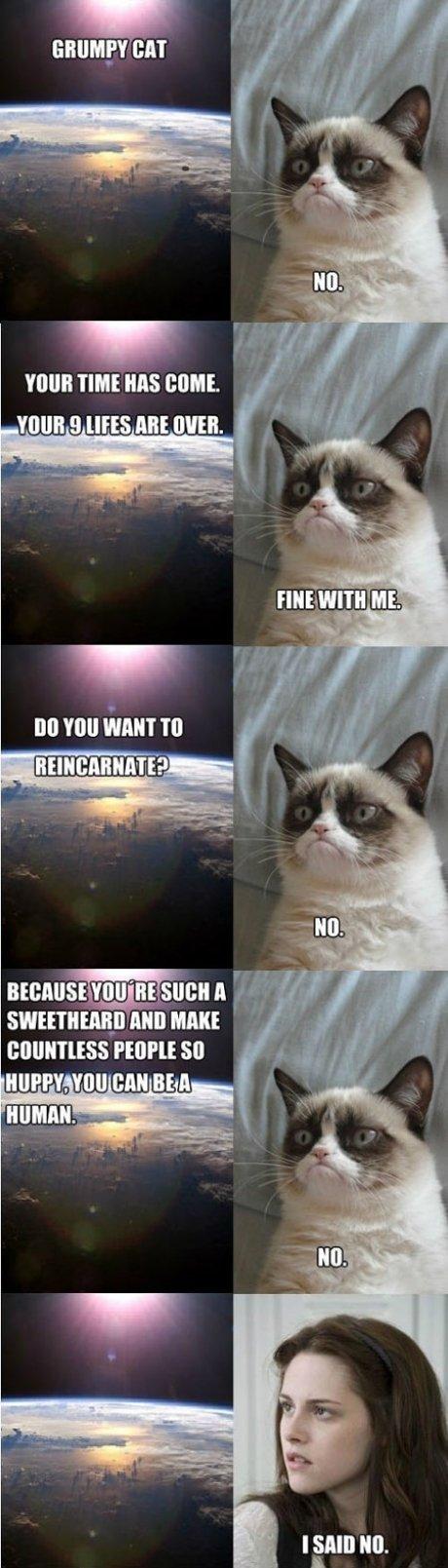 grumpy cat. . TIME MS dmit. VINE g HHS ME HIKE. TIMI HINT TO kirill alum mm FE[ Ipl. £ so alt. Sweetheard? grumpy cat TIME MS dmit VINE g HHS ME HIKE TIMI HINT TO kirill alum mm FE[ Ipl £ so alt Sweetheard?