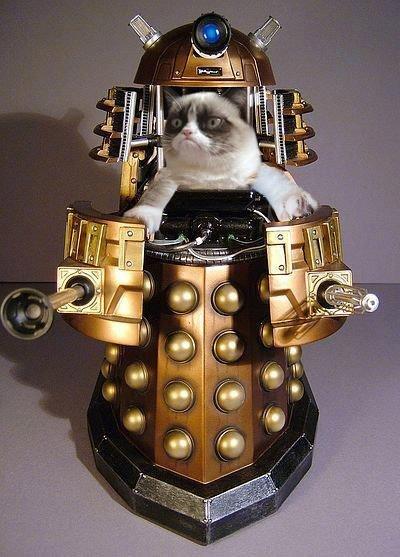 Grumpy Dalek. not mine. Grumpy Dalek not mine