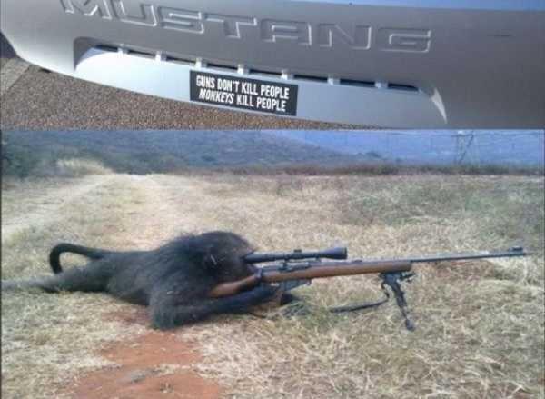 Guns and Monkeys. .. yep Guns and Monkeys yep
