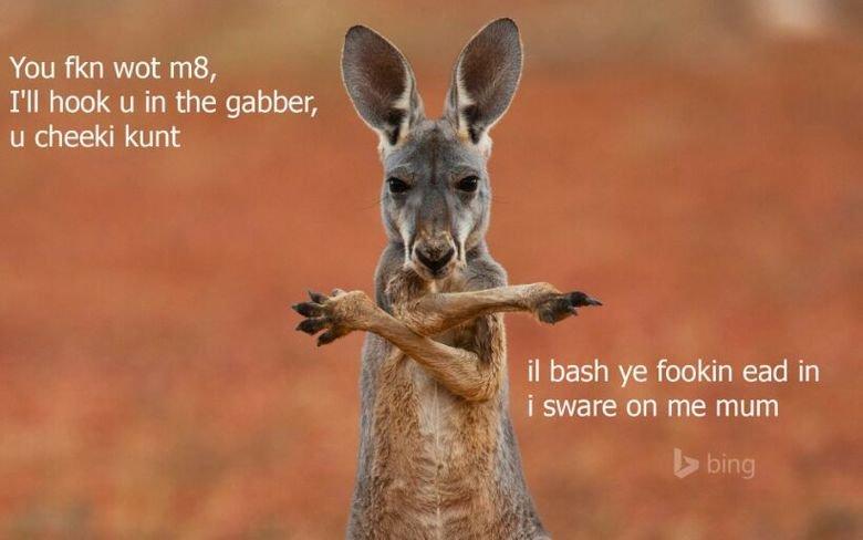 Kangaroo Jack. . I' ll hook u in the gamer, h. is . i u cheeki kunt H,' I Jr f 3 bash ye dovakin ead In Ac, ) i swore on me mum. U wot m8? Kangaroo Jack I' ll hook u in the gamer h is i cheeki kunt H ' I Jr f 3 bash ye dovakin ead In Ac ) swore on me mum U wot m8?