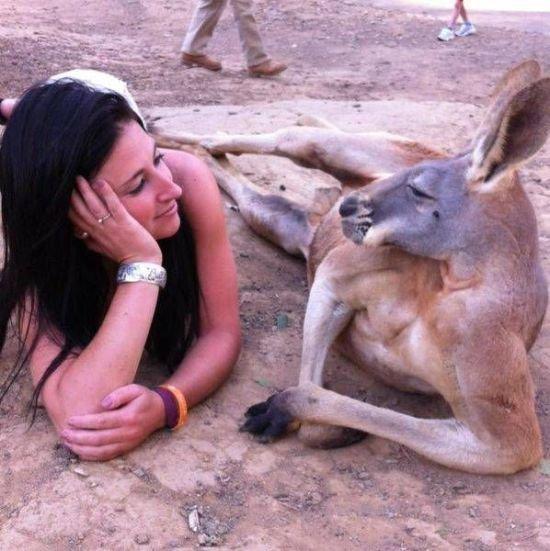 Kangaroo Sweet Talks Woman. .. you gon get raped Kangaroo Sweet Talks Woman you gon get raped