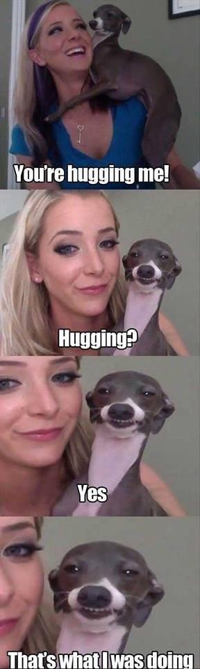 Kermit loves to hug. . Kermit loves to hug